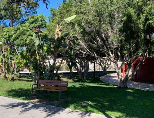 La Concejalía de Parques y Jardines continúa con los trabajos de ornamentación en el municipio